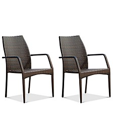 Holtan Set of 2 Outdoor Wicker Chairs, Quick Ship