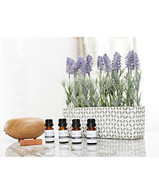 Gaiam 4-Pk. Essential Oils