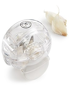 Garlic Zoom, Created for Macy's