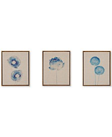 Madison Park Blue Print Botanicals 3-Pc. Framed Canvas Print Set