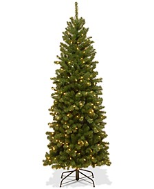6' North Valley Spruce Pencil Slim Tree With 250 Clear Lights