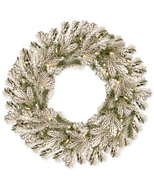 """24"""" Feel Real® Snowy Sheffield Spruce Wreath With 50 Battery-Operated LED Lights & Timer"""