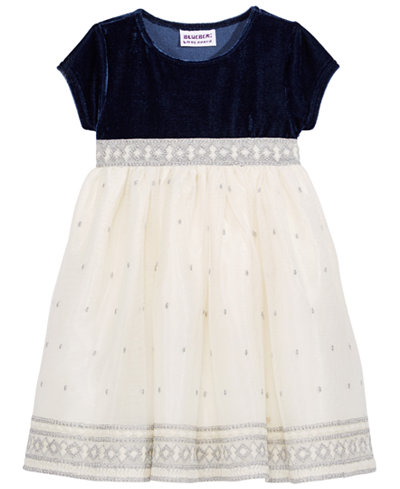 Blueberi Boulevard Velvet & Metallic Embroidery Dress, Baby Girls