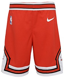 Chicago Bulls Icon Replica Shorts, Little Boys (4-7)