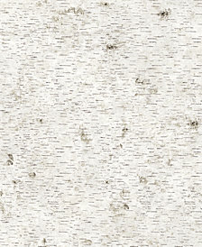 Genenieve Gorder For Tempaper Birchy Barky Self-Adhesive Wallpaper