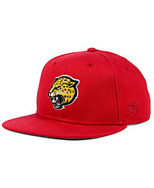 Top of the World IUPUI Jaguars League Snapback Cap