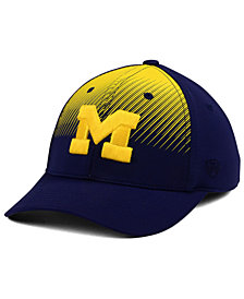 Top of the World Michigan Wolverines Fallin Stretch Cap