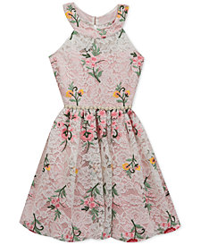 Rare Editions Embroidered Lace Dress, Big Girls