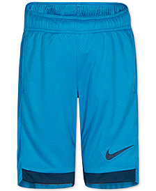 Nike Dry Trophy Shorts, Little Boys