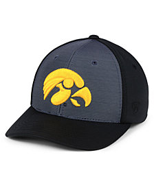 Top of the World Iowa Hawkeyes Mist Cap