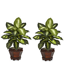 Nearly Natural 2-Pc. Dieffenbachia Plant Set with Wood Vases