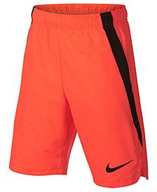 Nike Big Boys Colorblocked Training Shorts