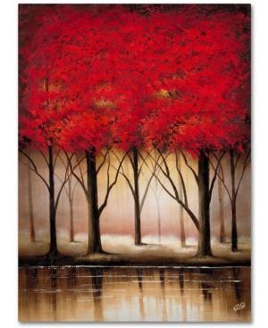Rio Serenade in Red 18 x 24 Canvas Art Print