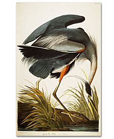 "John James Audubon 'Great Blue Heron' 30"" x 47"" Canvas Art Print"