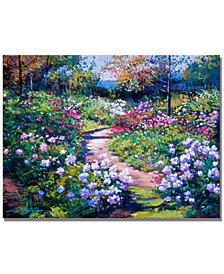 "David Lloyd Glover 'Nature's Garden' 24"" x 32"" Canvas Art Print"