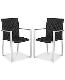 Anneke Arm Chair (Set Of 2), Quick Ship