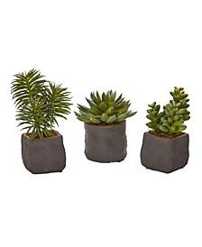 Trio of Artificial Succulent Plants, Set of 3