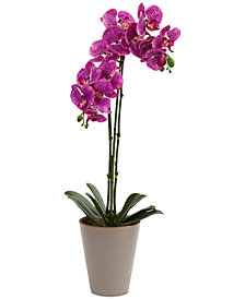 "Nearly Natural 24"" Speckled Phalaenopsis Orchid Artificial Arrangement with Vase"