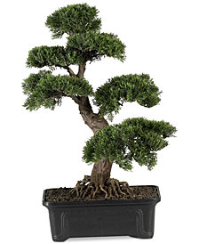 Nearly Natural 24'' Cedar Bonsai Artificial Plant
