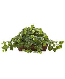 Pothos Artificial Plant in Ledge Basket
