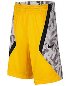Nike Big Boys Colorblocked Avalanche Shorts
