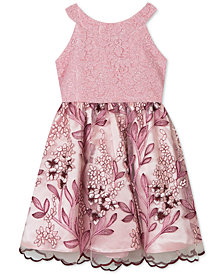 Rare Editions Little Girls Lace Embroidered Dress