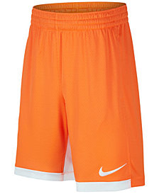 Nike Dri-FIT Trophy Training Shorts, Big Boys