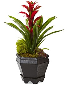 Bromeliad Artificial Plant in Black Hexagon Planter