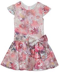 Rare Editions Little Girls Embroidered Mesh Drop-Waist Dress