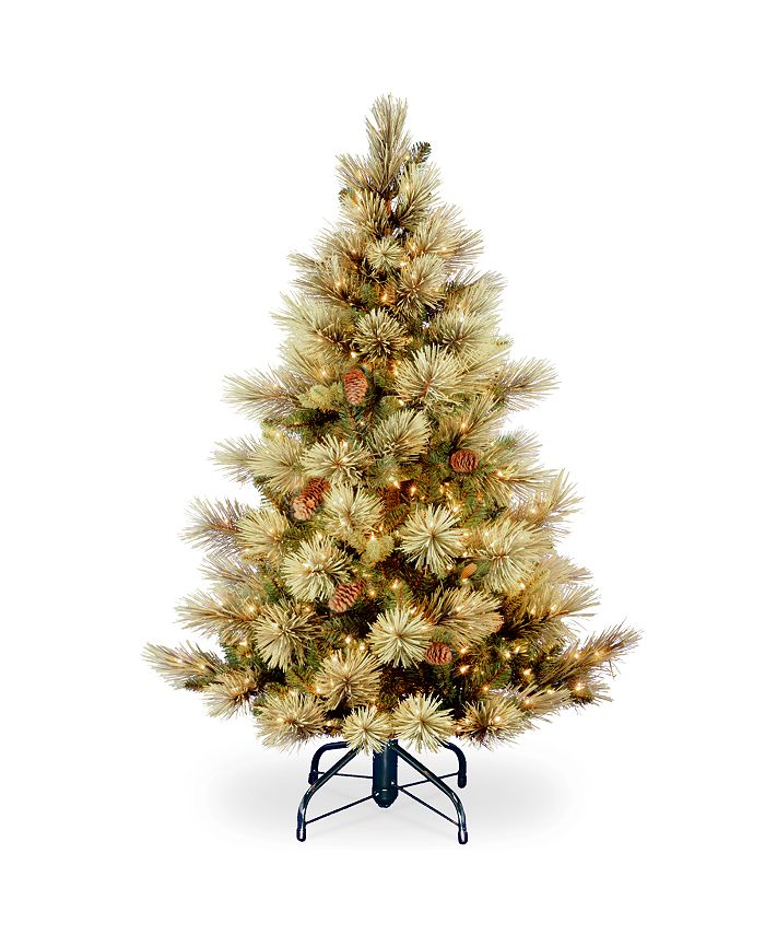 National Tree Company - National Tree 4 .5' Carolina Pine Tree with 450 Clear Lights