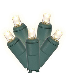 50 Warm White Twinkle Wide Angle LED Light on Green Wire, 25' Christmas Light Strand