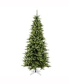 Vickerman 7.5' Camdon Fir Slim Artificial Christmas Tree with 700 Warm White LED Lights