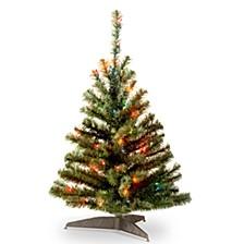 National Tree 3' Kincaid Spruce Tree with 100 Multicolor Lights