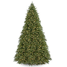 National Tree 12' Feel Real Jersey Fraser Fir Tree with 2000 Clear Lights