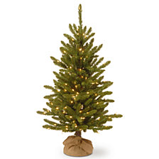 National Tree Company 4' Kensington Burlap Tree with 150 Clear Lights