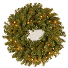 """National Tree Company 24"""" Norwood Fir Wreath with 50 Clear Lights"""