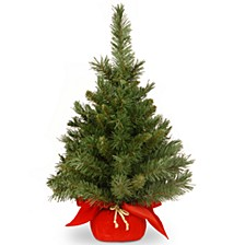 """24"""" Majestic Fir Tree in Red Cloth Bag"""