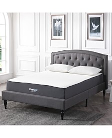 "Sleep Trends Ladan 10.5"" Cool Gel Memory Foam Cushion Firm Pillow Top Mattresses, Quick Ship, Mattress in a Box"