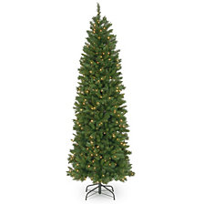 National Tree 7 .5' Pennington Fir Hinged Pencil Tree with 350 Clear Lights