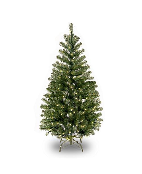National Tree Company National Tree 4' Spruce Tree with 100 Clear Lights