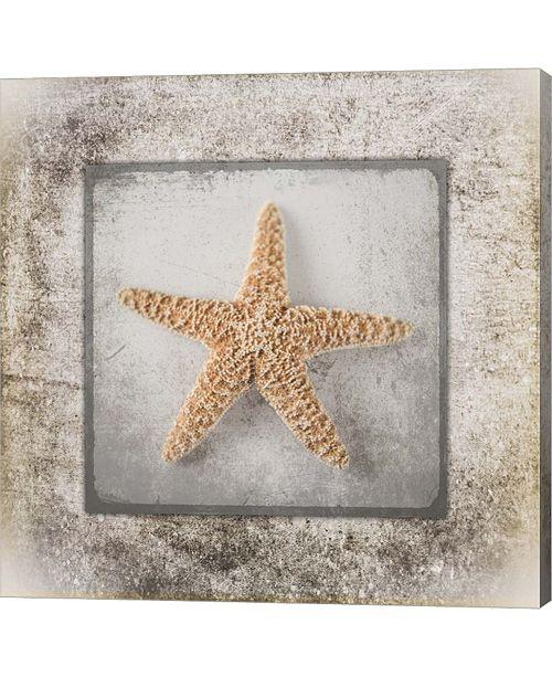 Metaverse Stone Star By Lightboxjournal Canvas Art