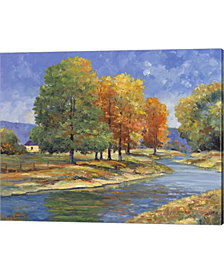 New England Autumn by John Zaccheo Canvas Art