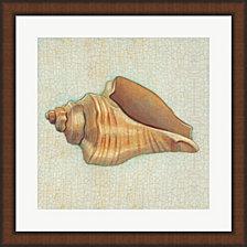 Coastal Treasures Ii By Josefina Framed Art