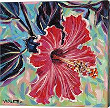 Hawaiian Beauty I By Carolee Vitaletti Canvas Art