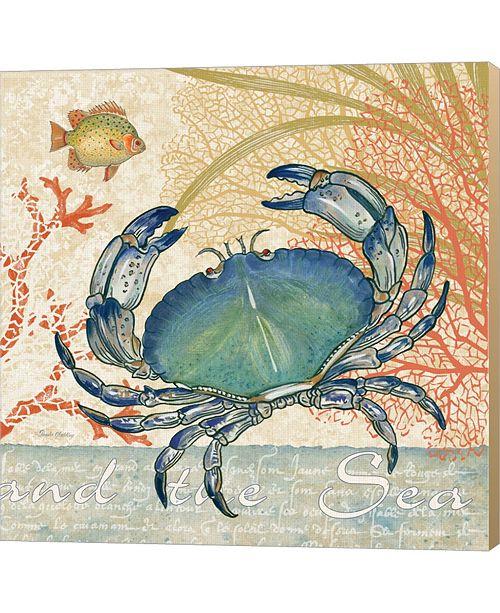 Metaverse Oceana II By Pamela Gladding Canvas Art