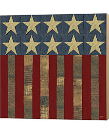 Patriotic Printer F By Tara Reed Canvas Art