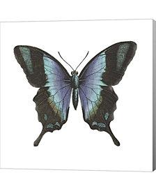 Butterfly Botanica1 By Tre Sorelle Studios Canvas Art