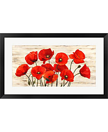 French Poppies By Serena Biffi Framed Art