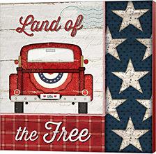 Land of the Free by Jennifer Pugh Canvas Art