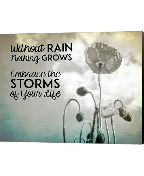 Metaverse Without Rain Nothing Grows Black And White By Color Me Happy Canvas Art